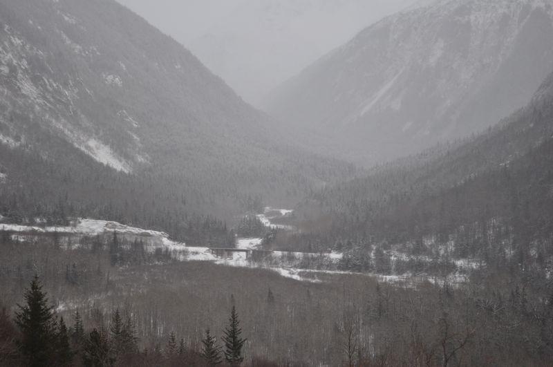 Dec 12 2010 069